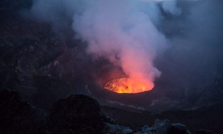 Le Petit Virunga Package (Mikeno)