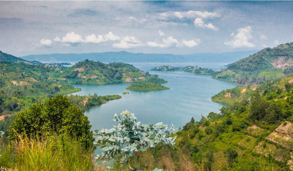 5 days Nyungwe forest, Virunga and Lake Kivu Safari