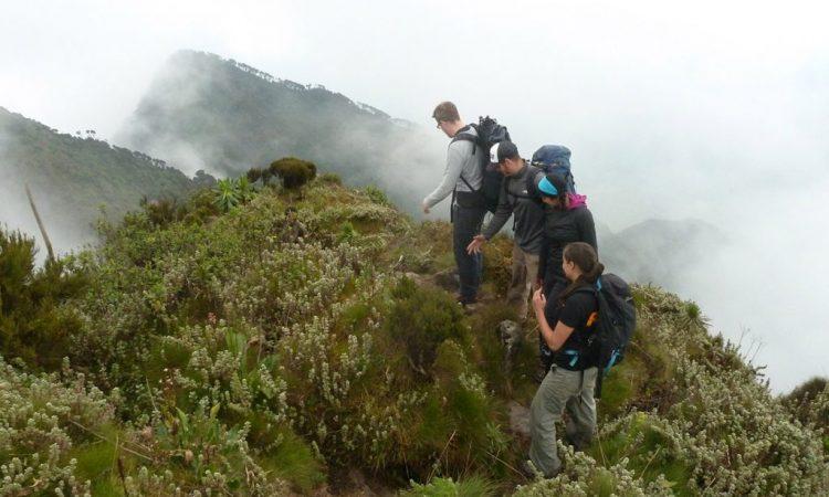 3 Days Mount Sabinyo Hiking safari