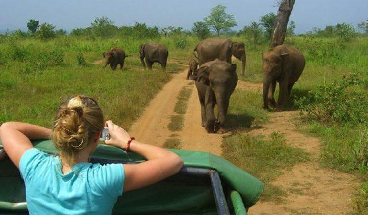 4 Days Murchison Falls Safari tour