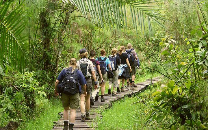 Bigodi guide nature walk